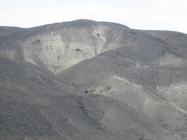 Nevada Landscape 3