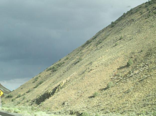Nevada Landscape 5