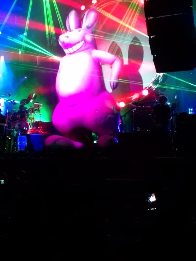 Aussie Pink Floyd Kangaroo.jpg